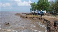 Kiến nghị Thủ tướng cơ chế cho doanh nghiệp xây dựng công trình bảo vệ bờ biển Cà Mau