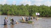 Trồng rừng ngập mặn ven biển giúp ngư dân thêm cơ hội làm giàu
