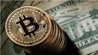 Cơn sốt tiền ảo Bitcoin: Sớm hoàn thiện khung pháp lý để tránh rủi ro