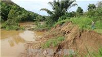 Tham vấn chuyên gia Nhật các giải pháp quản lý môi trường nước lưu vực sông
