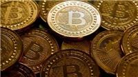 Giá Bitcoin mất 20%, nhiều nhà đầu tư cơ hội 'vã mồ hôi'