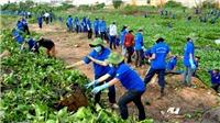 Xây dựng nông thôn mới làm thay đổi cả đời sống văn hóa tinh thần người dân