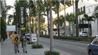 California cho phép bán cần sa, Bộ trưởng Tư pháp Mỹ kịch liệt phản đối