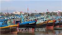 Bão số 1 vào biển Đông: Cơn bão hiếm 10 năm mới có 1 lần