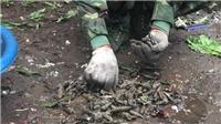 Vụ nổ ở Quan Độ, Bắc Ninh: Công binh đã thu lượm được 3 tấn đầu đạn