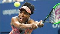 Chờ Venus Williams tái hiện lịch sử ở US Open