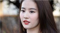 Lưu Diệc Phi – ngôi sao hoàn hảo cho 'Hoa Mộc Lan'