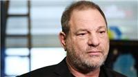 Hiệp hội các Nhà sản xuất Hollywood chính thức 'khai trừ' yêu râu xanh Harvey Weinstein
