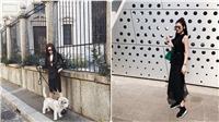 Cập nhật xu hướng qua street style của sao Việt tuần qua