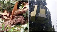 Tai nạn cáp treo nghiêm trọng khiến 7 người thiệt mạng