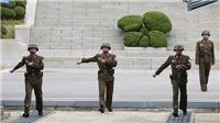 Lộn xộn bất thường ở khu vực DMZ giữa hai miền Triều Tiên