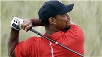Tiger Woods bị bắt vì lái xe trong tình trạng say xỉn