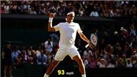 'Cả vũ trụ muốn Federer vô địch Wimbledon' sau khi Nadal, Murray, Djokovic lần lượt bị loại