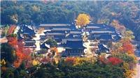 Hướng dẫn chi tiết cách xin visa du lịch Hàn Quốc tự túc