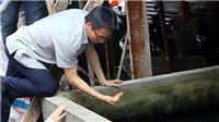 Phó Thủ tướng Vũ Đức Đam trực tiếp thị sát 2 ổ dịch sốt xuất huyết ở Hà Nội