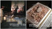 Hơn 1 tấn tai lợn ôi thiu vừa bị bắt giữ trên đường vận chuyển