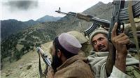 Trong 24 giờ, tiêu diệt được 19 phiến quân Taliban