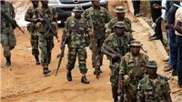 Quân đội Nigeria phóng thích hàng tay súng Boko Haram hoàn lương