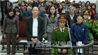 Xét xử nguyên Phó Giám đốc Sở Nông nghiệp và phát triển nông thôn Hà Nội
