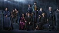Phim 'Sinh vật huyền bí' đã đóng máy phần 2, Johnny Depp bị fan 'tẩy chay'