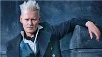 Fan Harry Potter đòi Johnny Depp ra khỏi phim 'Sinh vật huyền bí'