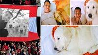 Alexis Sanchez dùng chó để chọn bồ, Arsenal nhờ chó giữ Sanchez