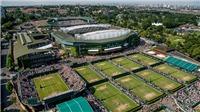 Tennis ngày 7/7: Djokovic phản bác tin đồn nghiện sex. Kyrgios bị bố của 'gái lạ' dọa đấm vỡ mặt