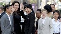Không có chuyện Angelina Jolie định tiến xa với tình mới