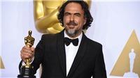 Đạo diễn 'The Revenant' nhận giải Oscar hiếm, hơn 20 năm chưa trao cho ai