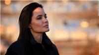 Angelina Jolie tiết lộ: Không thích nghề diễn viên, đóng phim chỉ vì tiền
