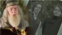 Từ chối công khai Dumbledore đồng tính, 'Sinh vật huyền bí 2' đang phản bội người hâm mộ?