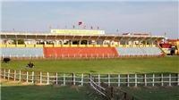 Lễ hội chọi trâu Đồ Sơn: Sới chọi được gia cố hàng rào