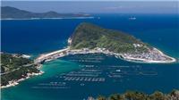 VIDEO: Có gì trên hòn đảo 'dành riêng cho đàn ông' vừa được công nhận Di sản Thế giới?