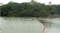 Cải tạo Hồ Gươm: không có chuyện thay thế, trồng lại cây xanh ven hồ