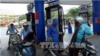 Giá xăng sẽ giảm mạnh trong hôm nay?