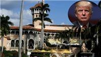 Tổng thống Mỹ Donald Trump là 'nạn nhân' đầu tiên của siêu bão Irma