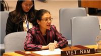Việt Nam dự phiên họp Đại Hội đồng LHQ về Đại dương và Luật biển: Kêu gọi tôn trọng 'hiến pháp của đại dương'