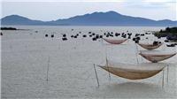 Tìm kế sách cứu cửa biển Cửa Đại khỏi mối nguy bồi lấp, giúp ngư dân rộng đường ra biển