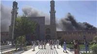 Vụ tấn công đền thờ Hồi giáo Ai Cập, 235 người chết, Tổng thống Putin, Donald Trump lên tiếng