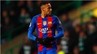 Truyền thông Brazil: Neymar đã đồng ý gia nhập PSG với giá 222 triệu euro