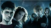 20 năm Harry Potter và độc giả Việt: Vẫn 'hớp hồn' người đọc từ 8 - 88 tuổi