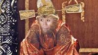 'The Monkey King - Đại náo thiên cung': Nhiều sao vẫn thiếu đẳng cấp