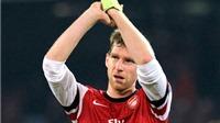 Arsenal gia hạn với Mertesacker: Gia cố bức tường thành London