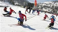 Paralympic mùa Đông Sochi: Nga thưởng hơn 2 tỷ đồng cho VĐV giành HCV