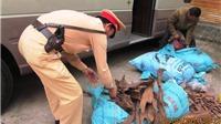 Quảng Bình: Phát hiện vụ vận chuyển gỗ Huê trên đường tiêu thụ