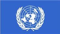Nhân viên LHQ bị sát hại tại Somalia
