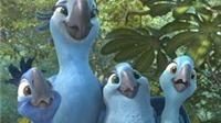 Phim 'Rio 2': Một bữa tiệc của âm thanh và màu sắc