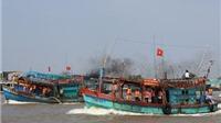 Chỉ đạo xác minh thông tin, bảo hộ 6 ngư dân Việt Nam bị Trung Quốc bắt giữ