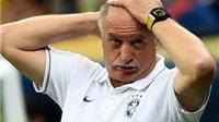Felipe Scolari từ chức HLV trưởng Brazil