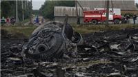 Báo Malaysia: Tên lửa đối không, pháo 30mm bắn rơi MH17